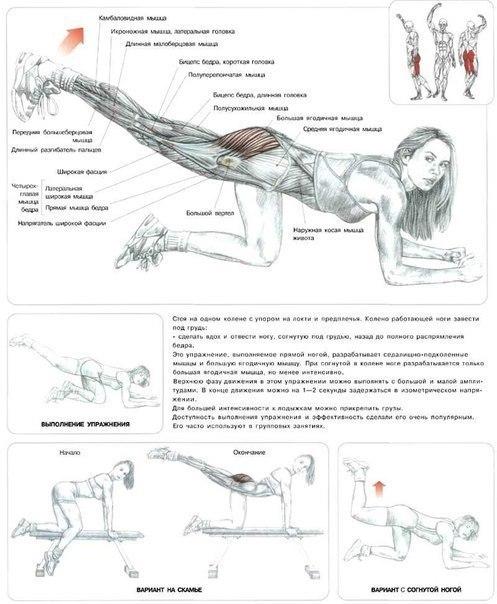 Упражнения на ноги в домашних условиях в картинках